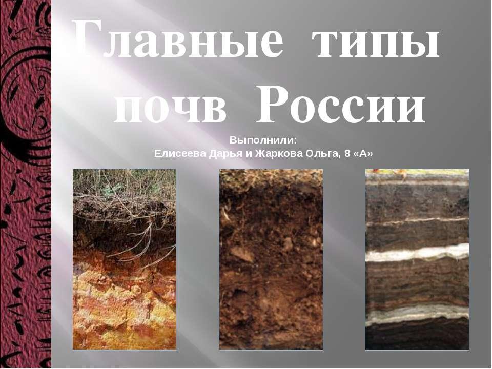 Главные типы почв России Выполнили: Елисеева Дарья и Жаркова Ольга, 8 «А»