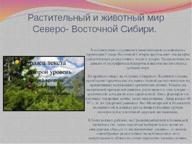 Растительный и животный мир Северо- Восточной Сибири. В соответствии с суровы...