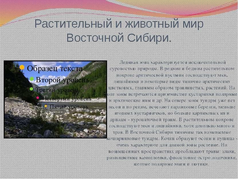 Растительный и животный мир Восточной Сибири. Ледяная зона характеризуется ис...