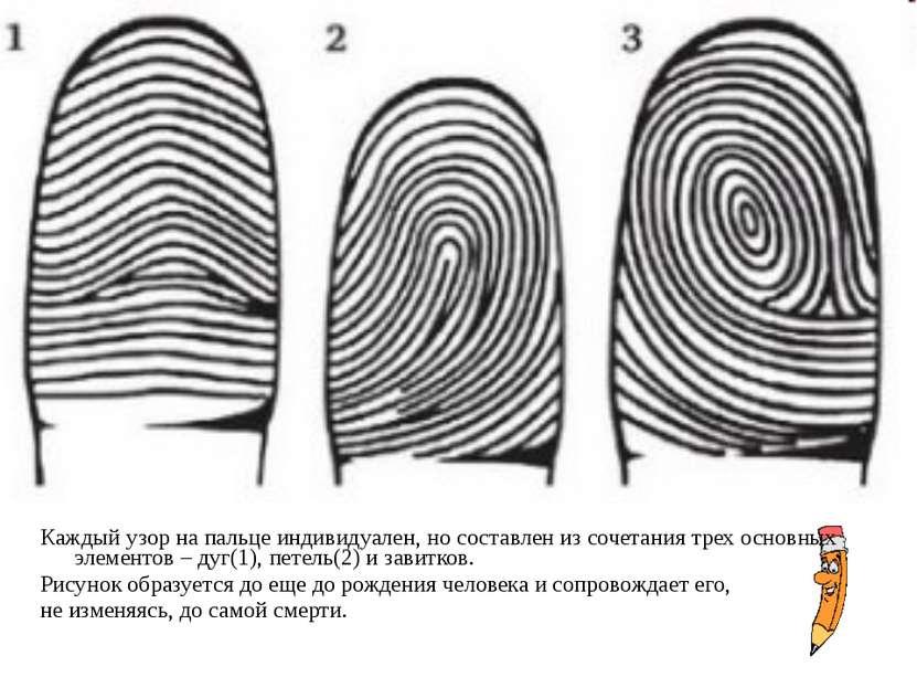 Каждый узор на пальце индивидуален, но составлен из сочетания трех основных э...