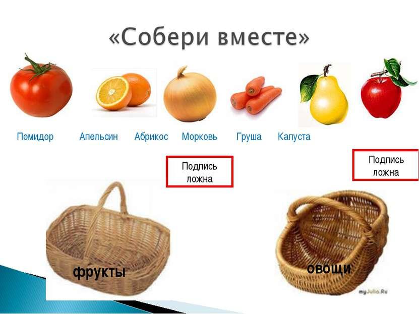 фрукты овощи Помидор Апельсин Абрикос Морковь Груша Капуста Подпись ложна Под...