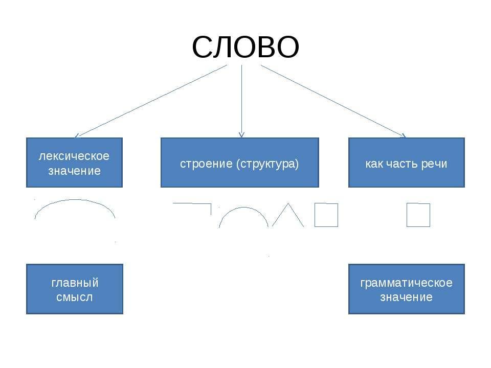 СЛОВО лексическое значение строение (структура) как часть речи главный смысл ...