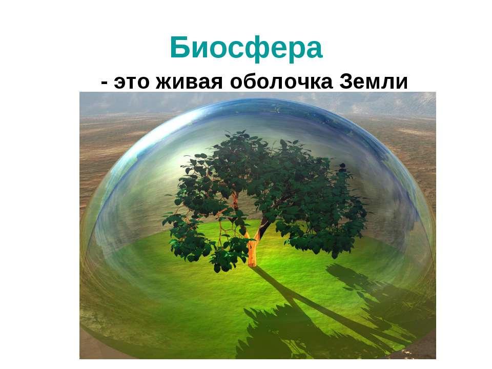 Биосфера - это живая оболочка Земли