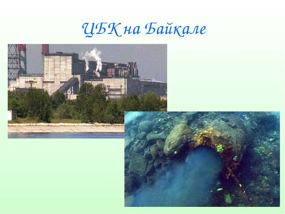 ЦБК на Байкале