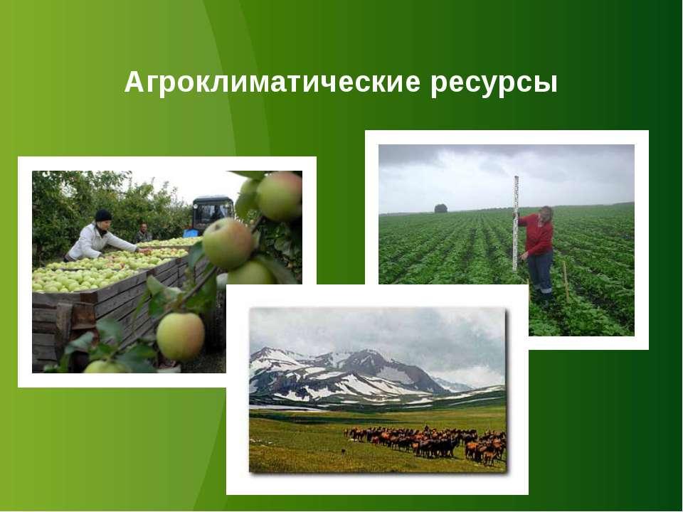 Агроклиматические ресурсы
