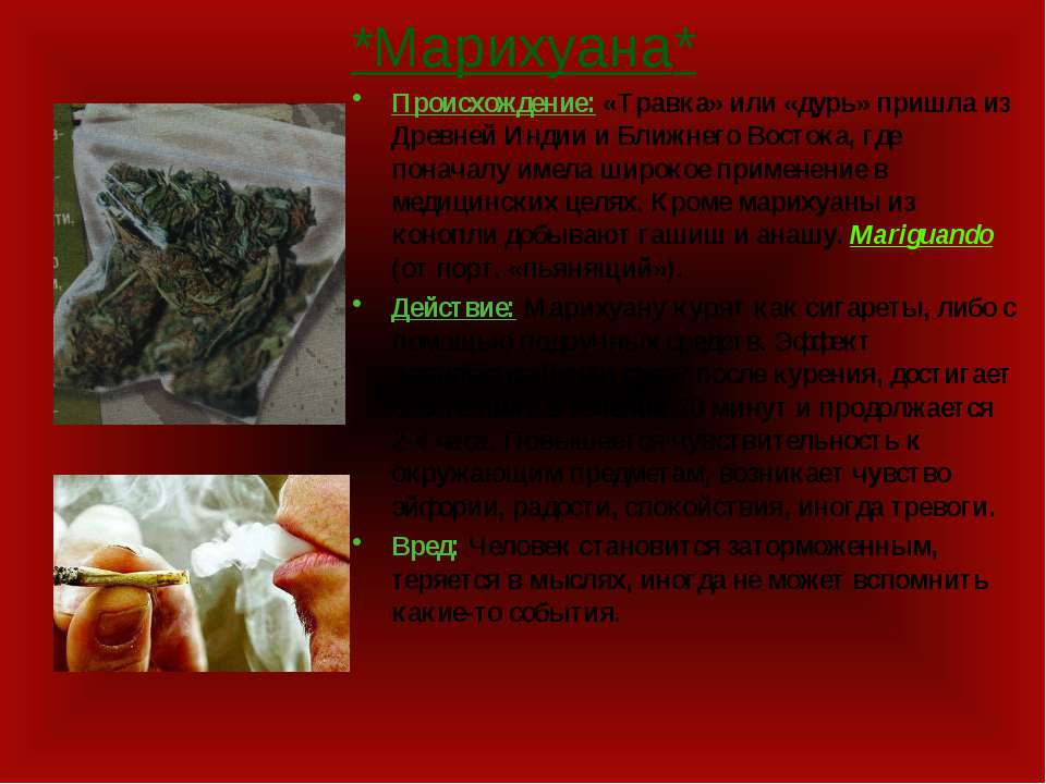 *Марихуана* Происхождение: «Травка» или «дурь» пришла из Древней Индии и Ближ...
