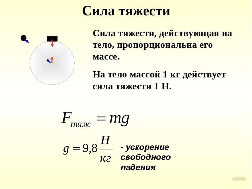 Сила тяжести Сила тяжести, действующая на тело, пропорциональна его массе. На...