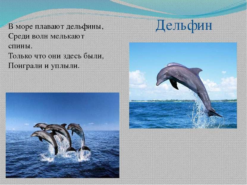 В море плавают дельфины, Среди волн мелькают спины. Только что они здесь были...