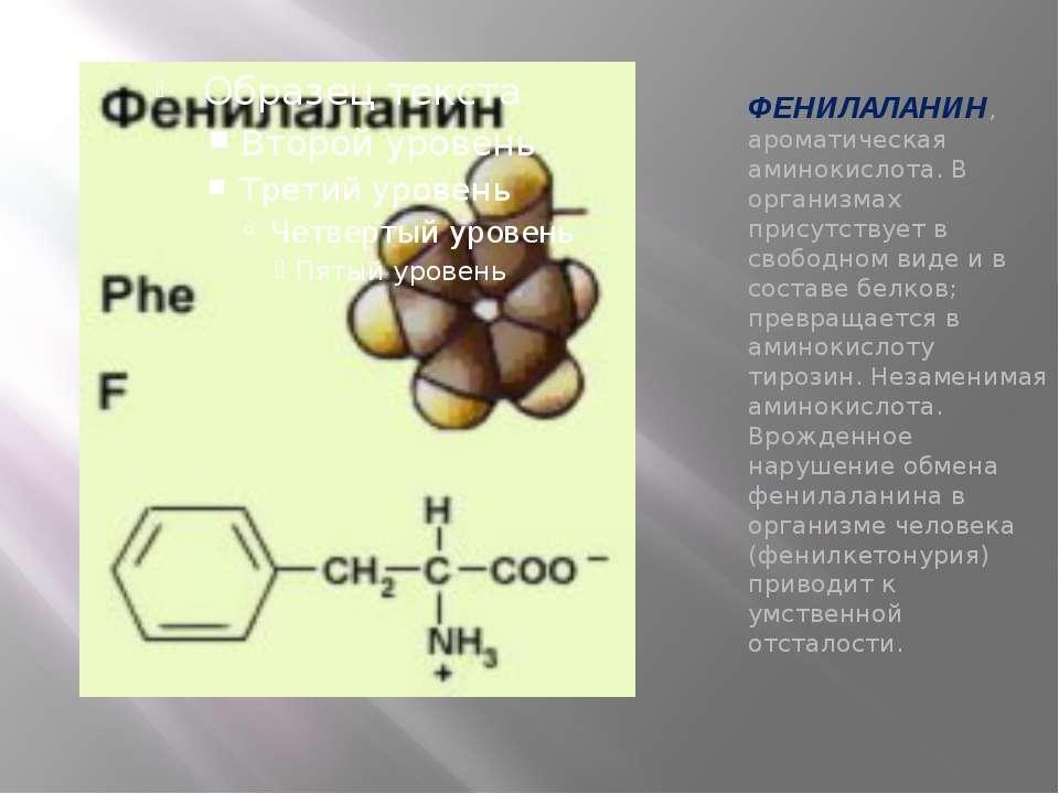 ФЕНИЛАЛАНИН, ароматическая аминокислота. В организмах присутствует в свободно...