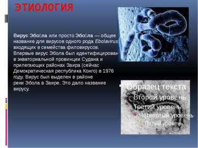 ЭТИОЛОГИЯ ВирусЭбо лаили простоЭбо ла— общее название для вирусов одного...