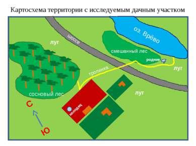 Картосхема территории с исследуемым дачным участком смешанный лес колодец родник