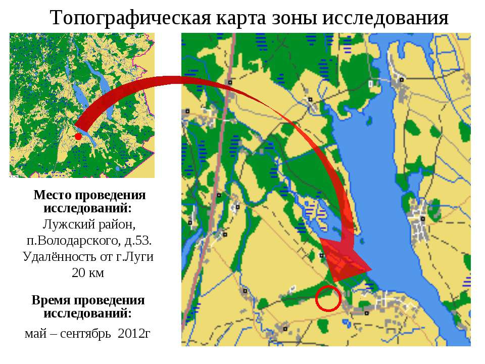 Топографическая карта зоны исследования Место проведения исследований: Лужски...