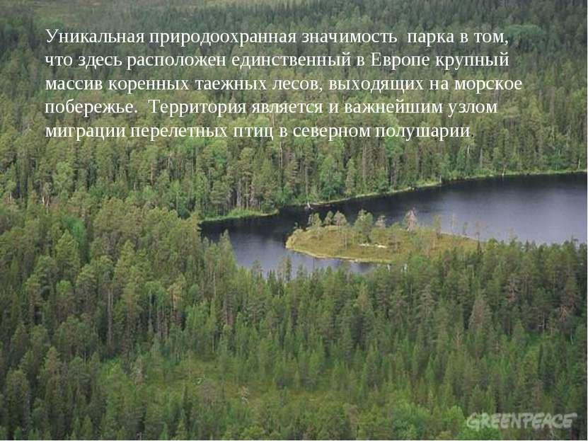 Уникальная природоохранная значимость парка в том, что здесь расположен единс...
