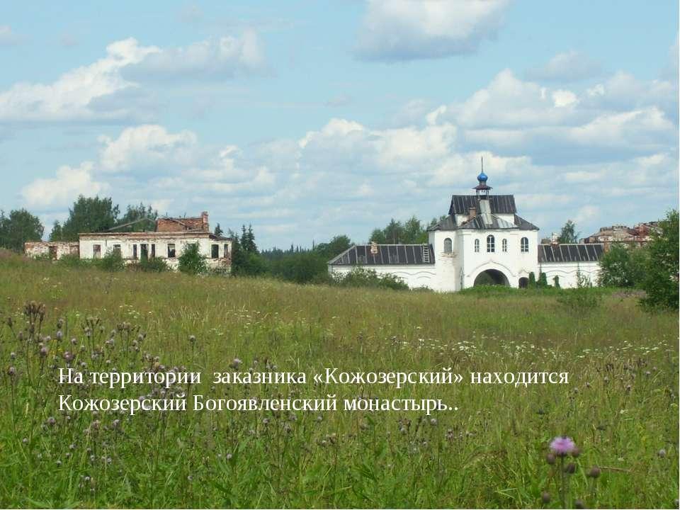 На территории заказника «Кожозерский» находится Кожозерский Богоявленский мон...