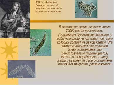 В настоящее время известно около 70000 видов простейших. Подцарство Простейши...