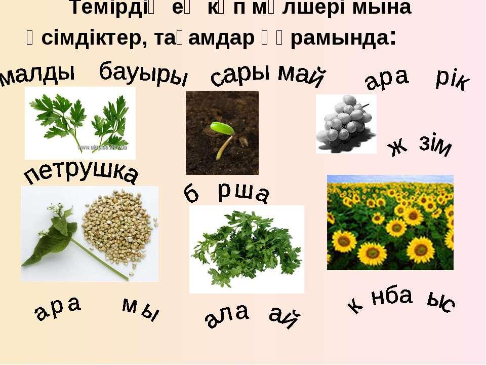 Темірдің ең көп мөлшері мына өсімдіктер, тағамдар құрамында: