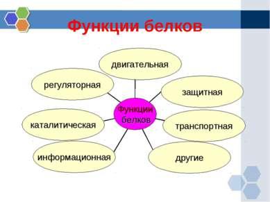 Функции белков