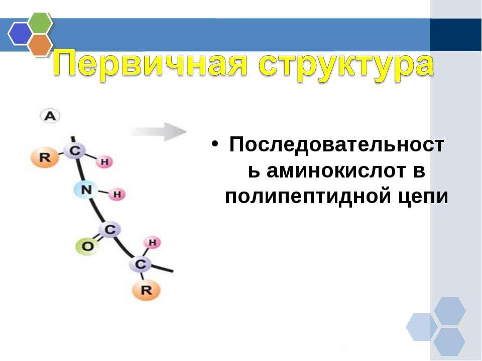 Первичная структура Последовательность аминокислот в полипептидной цепи