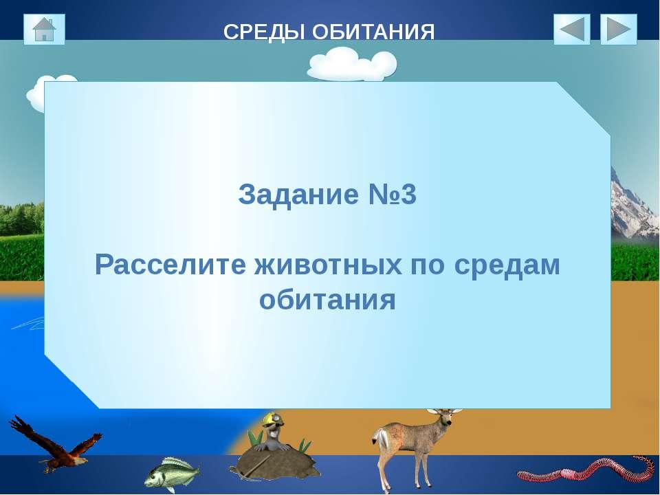 СРЕДЫ ОБИТАНИЯ Задание №3 Расселите животных по средам обитания
