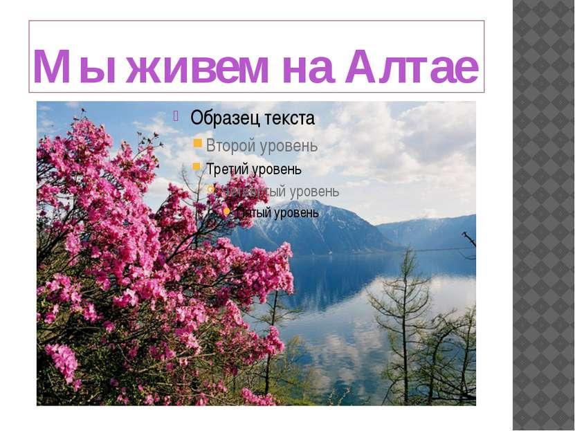 Мы живем на Алтае