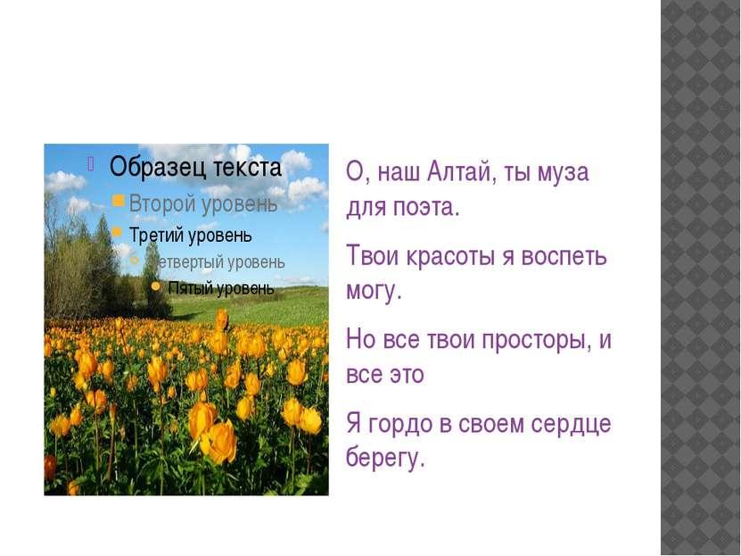О, наш Алтай, ты муза для поэта. Твои красоты я воспеть могу. Но все твои про...