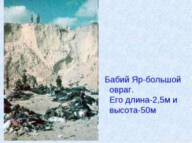 Бабий Яр-большой овраг. Его длина-2,5м и высота-50м