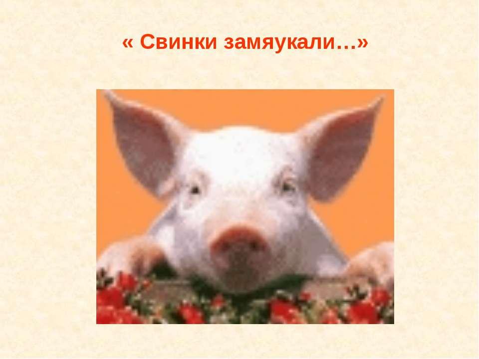 « Свинки замяукали…»