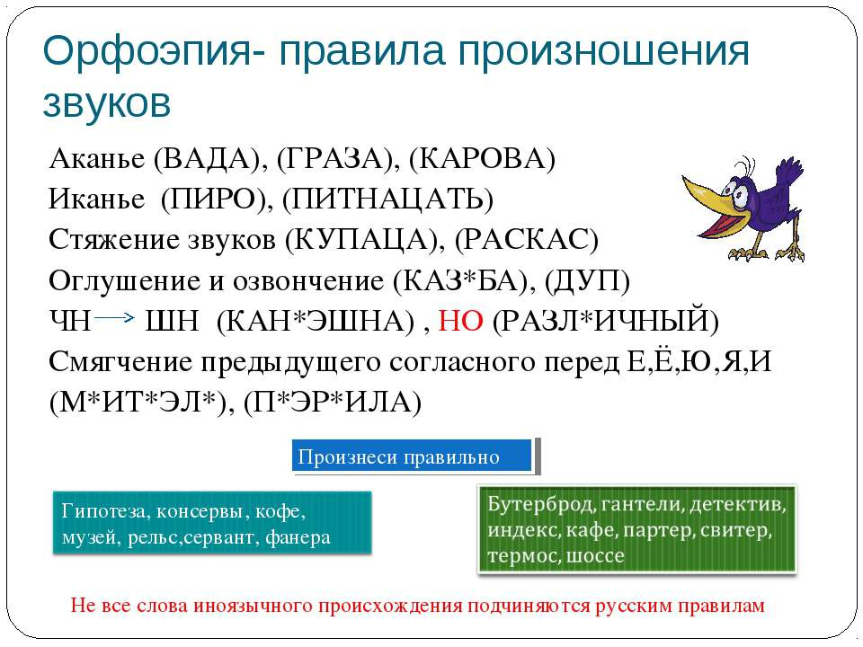 Орфоэпия- правила произношения звуков Аканье (ВАДА), (ГРАЗА), (КАРОВА) Иканье...