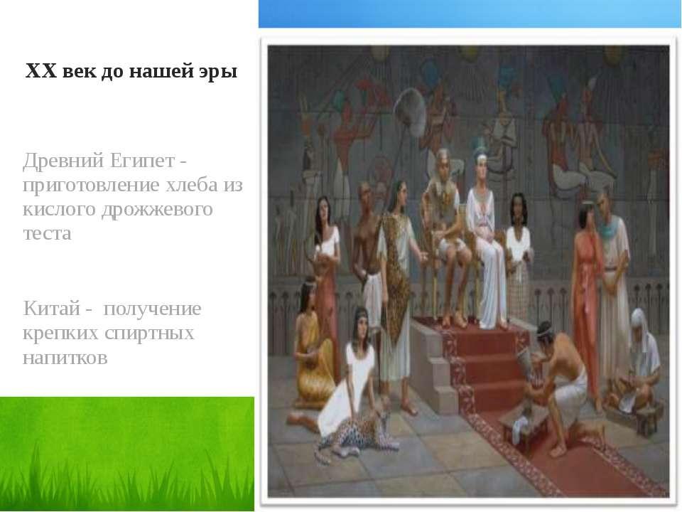 XX век до нашей эры Древний Египет - приготовление хлеба из кислого дрожжевог...