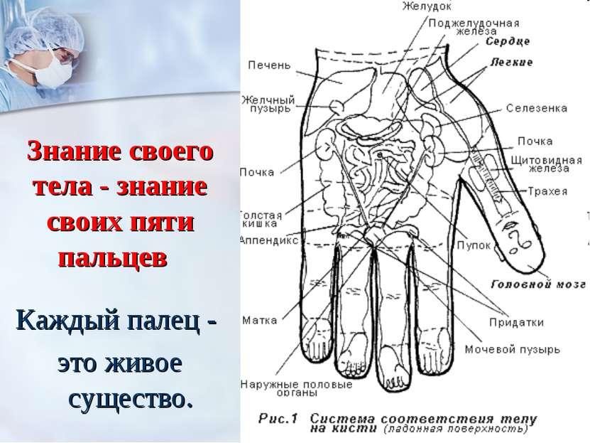 Знание своего тела - знание своих пяти пальцев Каждый палец - это живое суще...