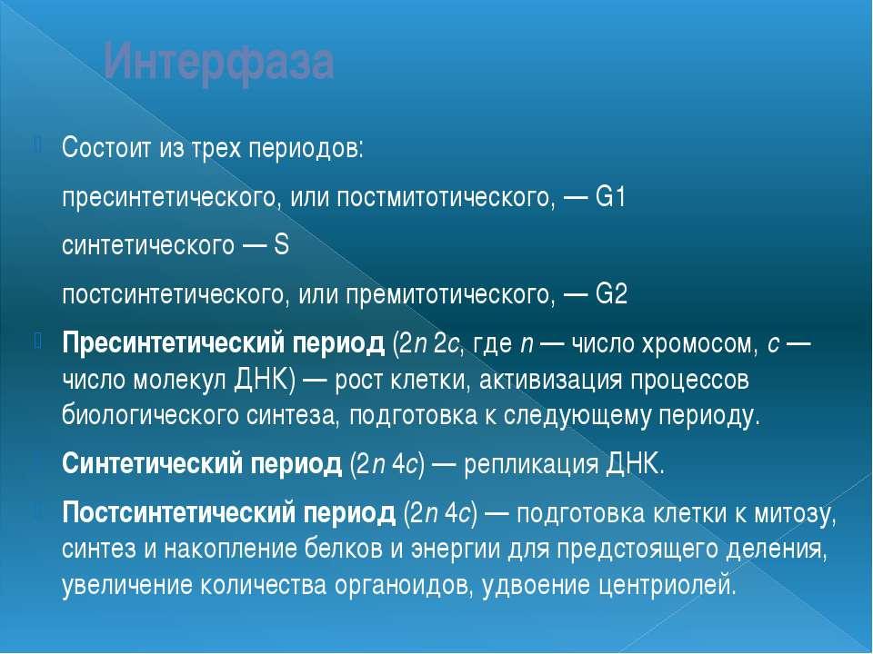 Интерфаза Состоит из трех периодов: пресинтетического, или постмитотического,...
