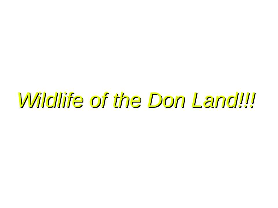 Wildlife of the Don Land!!!