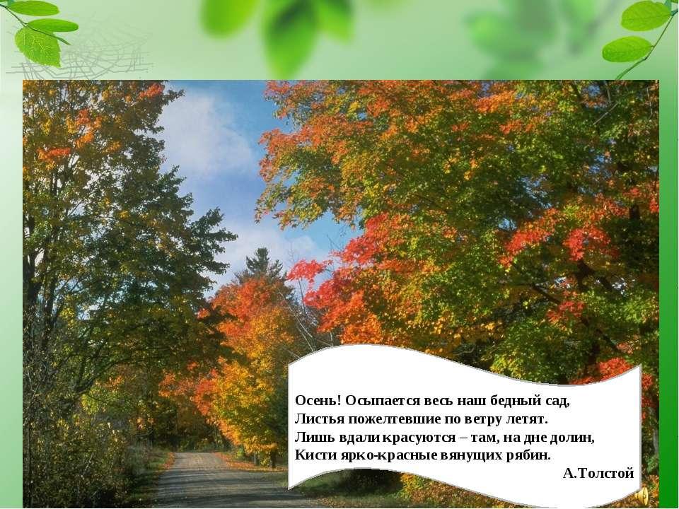 Осень! Осыпается весь наш бедный сад, Листья пожелтевшие по ветру летят. Лишь...