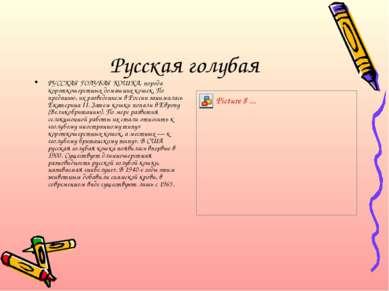 Русская голубая РУССКАЯ ГОЛУБАЯ КОШКА, порода короткошерстных домашних кошек....