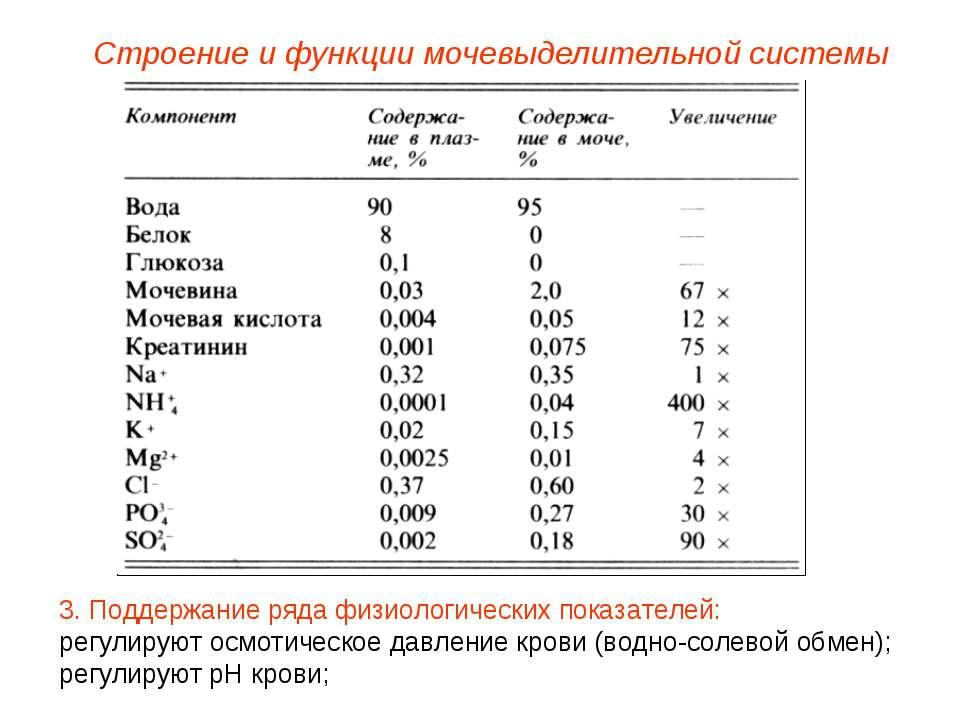 Строение и функции мочевыделительной системы 3. Поддержание ряда физиологичес...