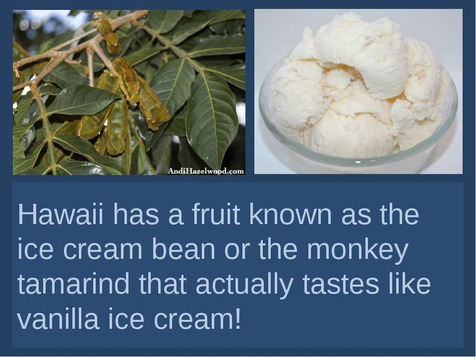 Hawaii has a fruit known as the ice cream bean or the monkey tamarind that ac...