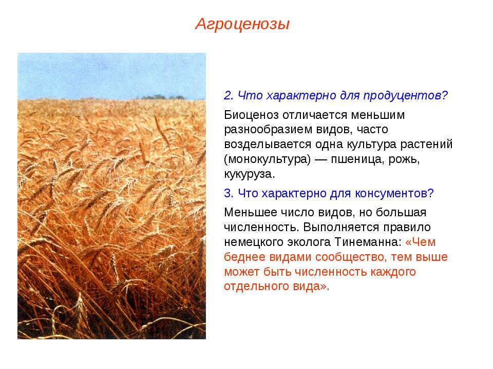 Агроценозы 2. Что характерно для продуцентов? Биоценоз отличается меньшим раз...