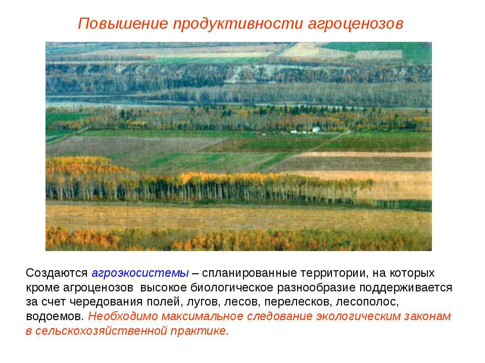 Повышение продуктивности агроценозов Создаются агроэкосистемы – спланированны...