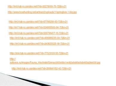 http://im0-tub-ru.yandex.net/i?id=93278169-70-72&n=21 http://www.bowhunting.n...