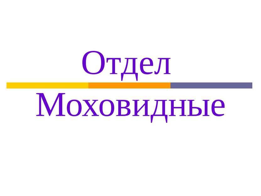 Отдел Моховидные