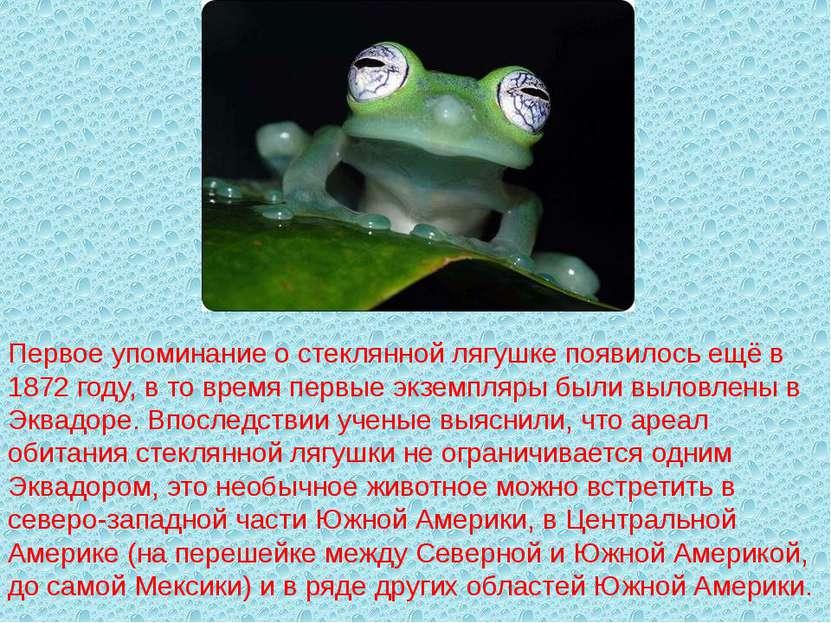 Первое упоминание о стеклянной лягушке появилось ещё в 1872 году, в то время ...