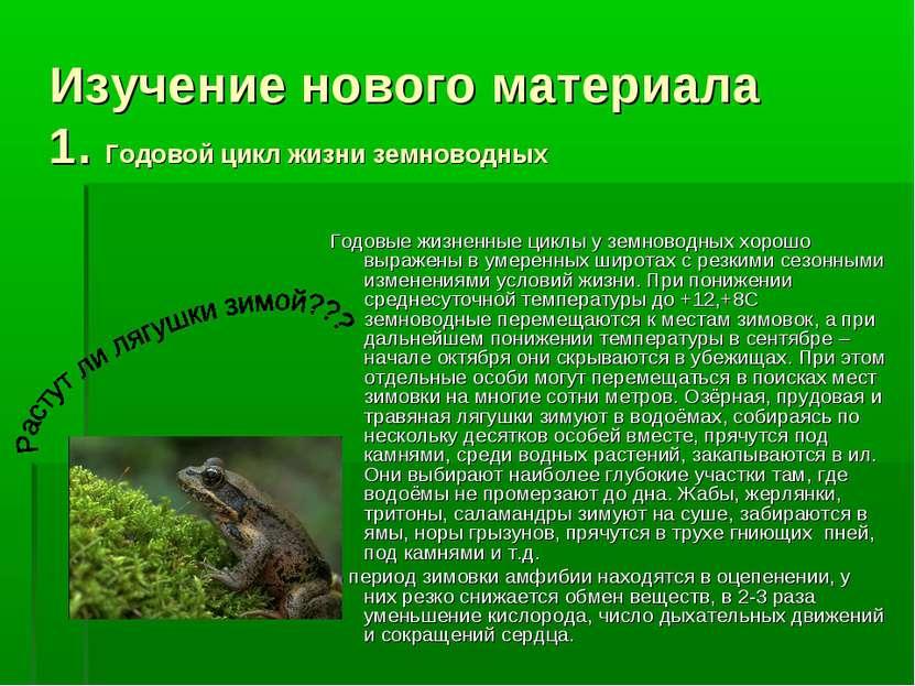 Изучение нового материала 1. Годовой цикл жизни земноводных Годовые жизненные...