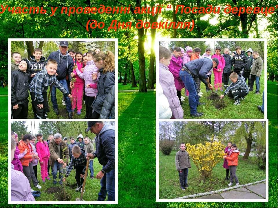 """Участь у проведенні акції """" Посади деревце"""" (до Дня довкілля)"""