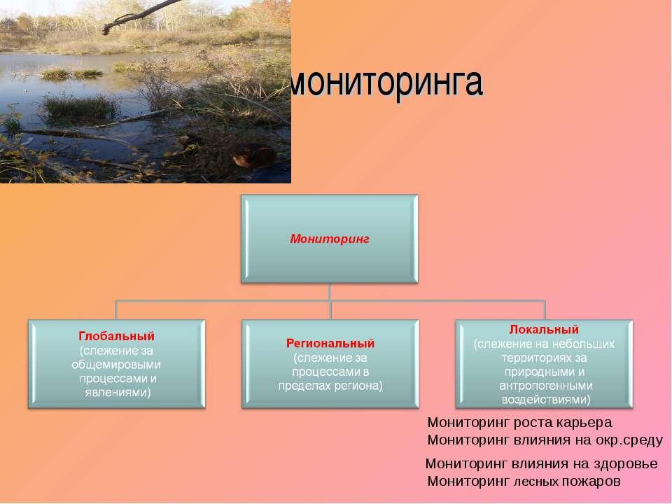 Виды мониторинга Мониторинг роста карьера Мониторинг влияния на окр.среду Мон...
