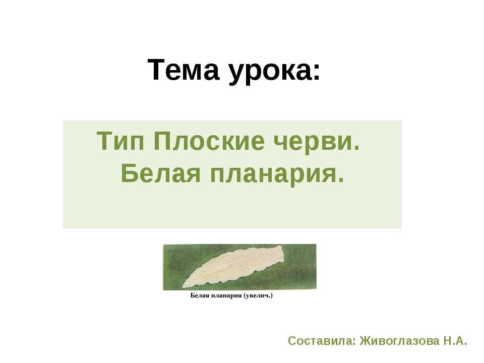 Тема урока: Тип Плоские черви. Белая планария. Составила: Живоглазова Н.А.