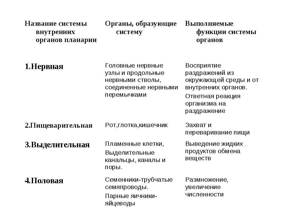 Название системы внутренних органов планарии Органы, образующие систему Выпол...