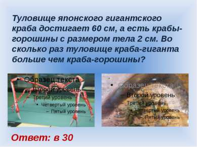 Туловище японского гигантского краба достигает 60 см, а есть крабы-горошины с...