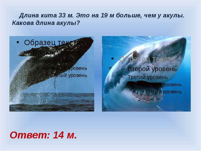Длина кита 33 м. Это на 19 м больше, чем у акулы. Какова длина акулы? Ответ: ...