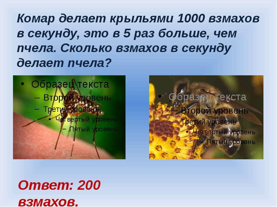 Комар делает крыльями 1000 взмахов в секунду, это в 5 раз больше, чем пчела. ...