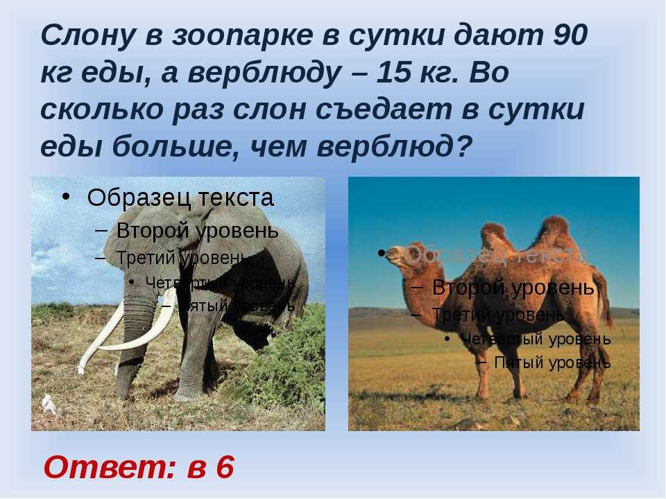 Слону в зоопарке в сутки дают 90 кг еды, а верблюду – 15 кг. Во сколько раз с...